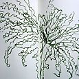 Fern with green brush pen