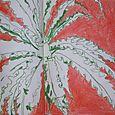 Green fern, orange surrounding