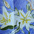 Yellow and peach lilies on blue-violet ground