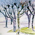 Winter trees, chateau at Amboise