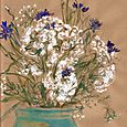 Queen Anne's Lace and cornflowers
