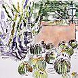 Cactus garden, Lotusland