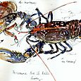 Brittany, lobster and crabs, Auray market