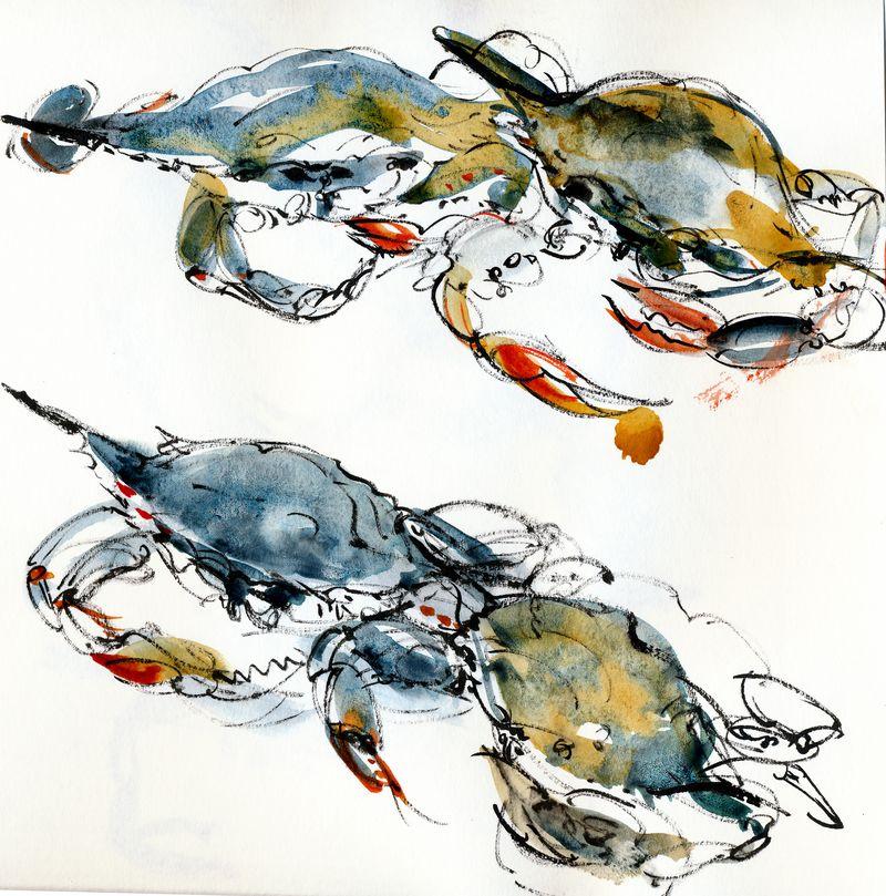 Blue-crab-x4