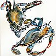 Blue crabs, sketches