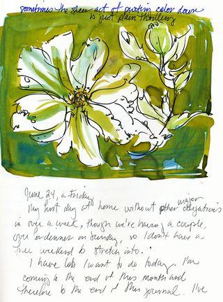 My-journal--matillia