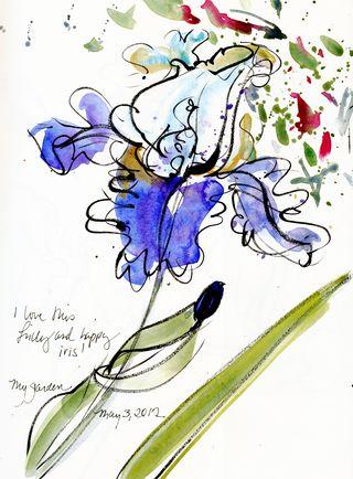 Iris-happy