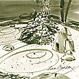 J C Raulston Arboretum illustrations: Zen garden