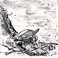Saxapahaw turtle for Walter Magazine