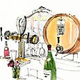 Illustration for Walter Magazine: Wine Authorities
