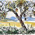 Italy, Penelope's peach tree
