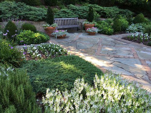 Garden-with-textures-june