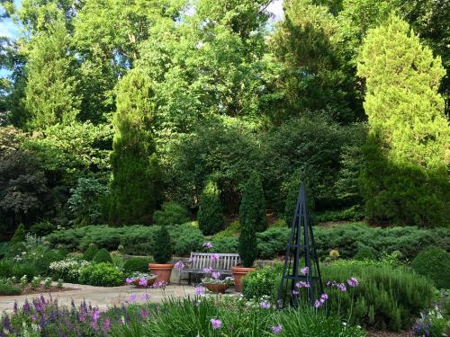 Garden june 17
