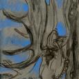 Alaska: mounted moose head drawn with charred twig