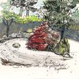 J C Raulston Arboretum, Zen Garden