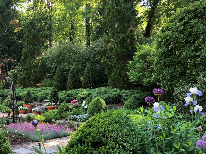 Laura garden blog long shot