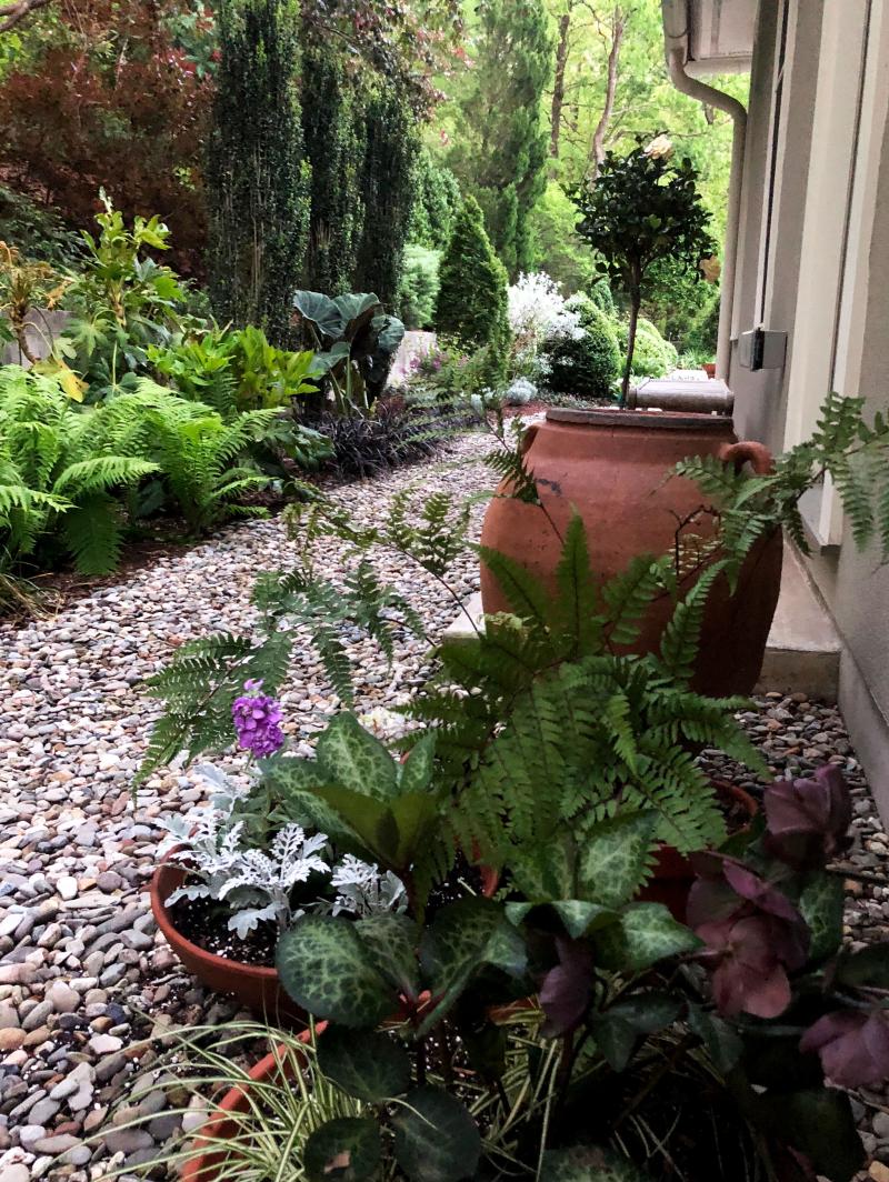 Laura-garden--studio-path