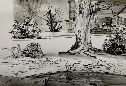 Garden-seen-from-studio -pen-and-ink