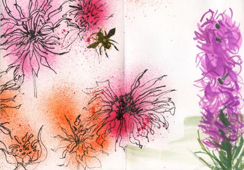 Garden-book-bee-balm-liatris