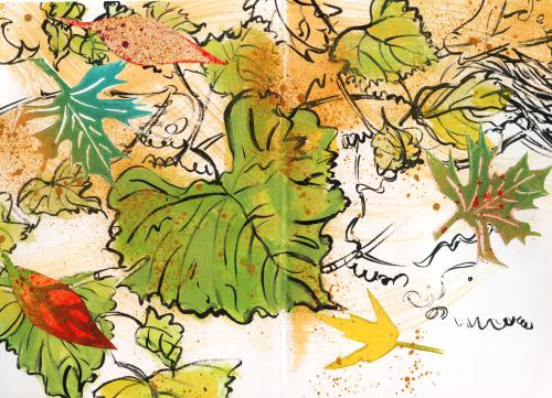 Garden-book-pen-page-