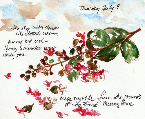 Walk journal, July 9