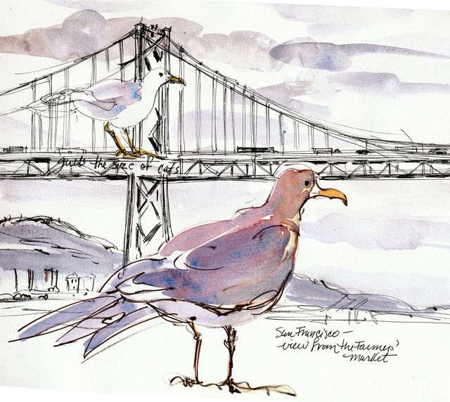 Gulls and Golden Gate bridge