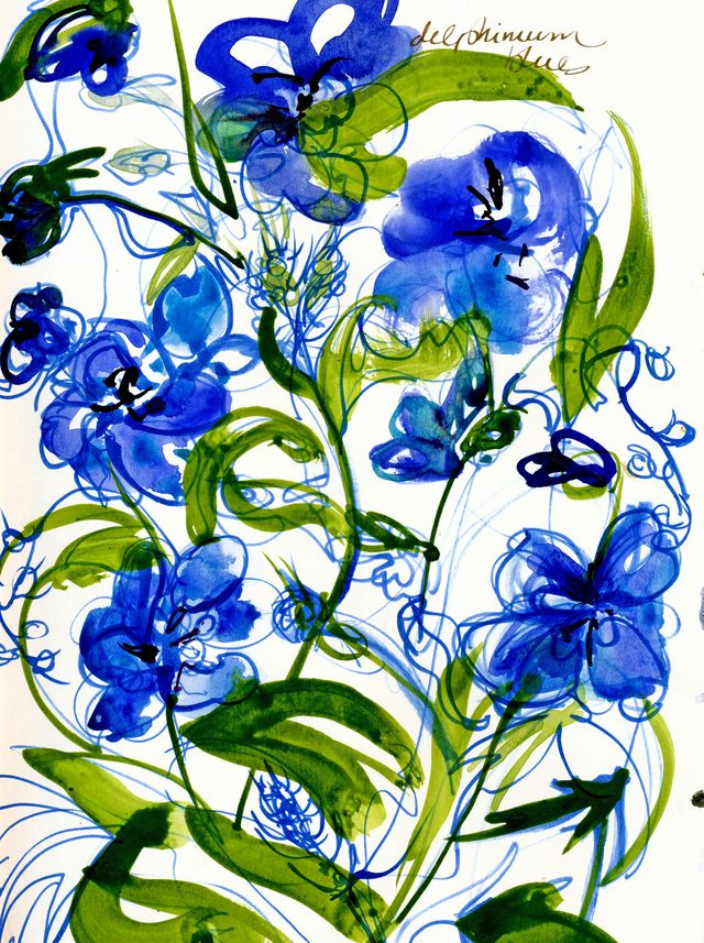 Delphinium-blues-copy