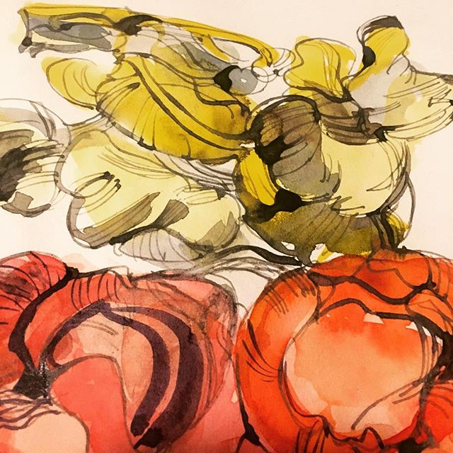 Journal sketch: exotic mushrooms from the local farmers' market.