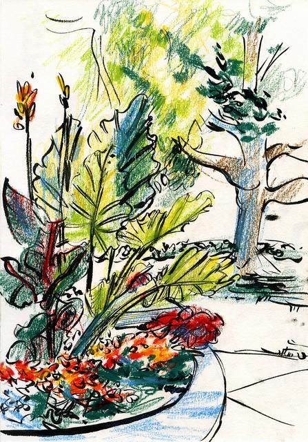 Michigan garden sketch